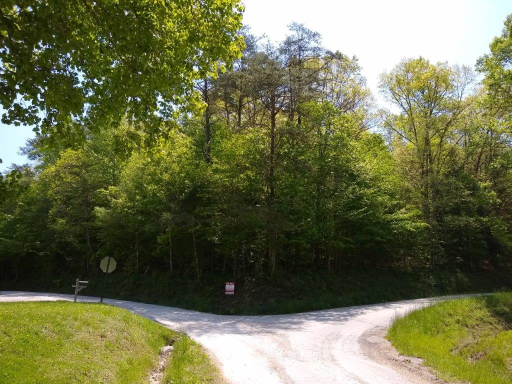 Wolfe Co. – Acreage on Trace Fork Rd